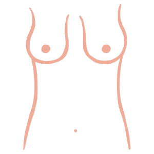 Bell shaped breasts from ThirdLove's Breast Shape Dictionary
