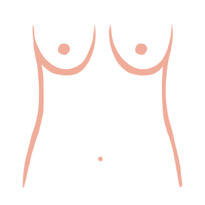 Slender breast shape from ThirdLove's Breast Shape Dictionary
