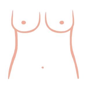 Tear Drop breast shape from ThirdLove's Breast Shape Dictionary